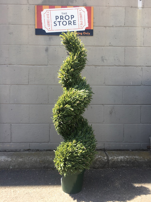 GRE0068 GREENERY, Topiary - Rosemary Spiral - 120cm H $75