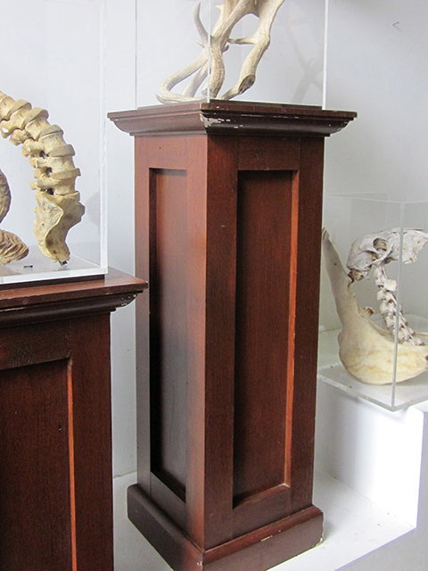 PLI0015 PLINTH, Stained Timber 39 x 39 x 100cm H $62.50