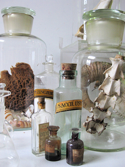 Science - apothecary and specimens (3)