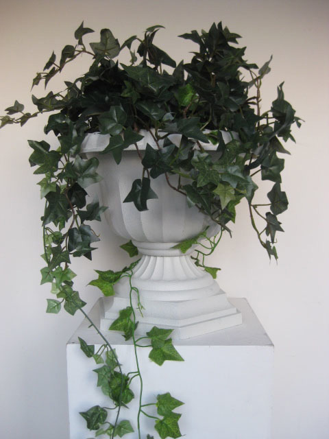 Urns with trailing ivy vines (can fit on top of Roman columns)