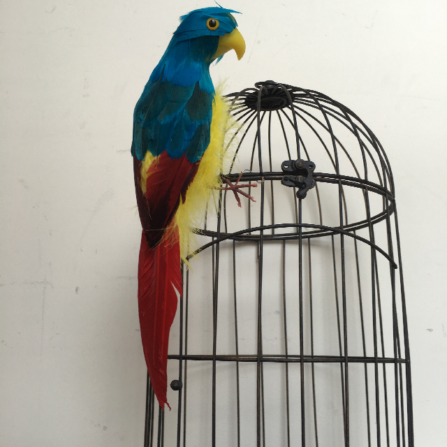 BIR0016 BIRD, Parrot - Small $6.25