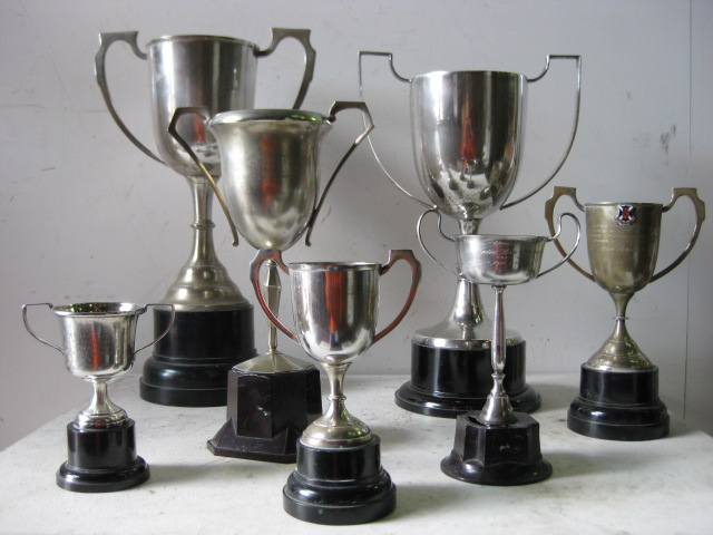 TRO0006 TROPHY, Cup - Medium 25-30cm H (Bronze or Silver Assorted) $20
