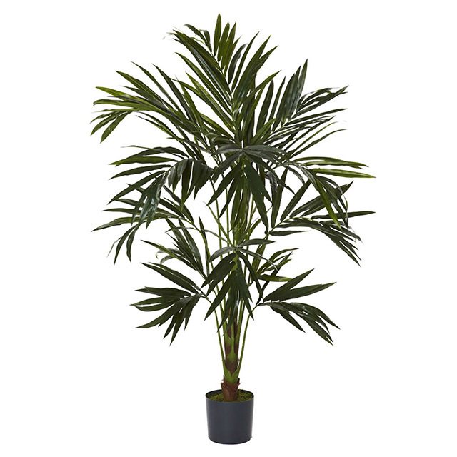 GRE0004 GREENERY, 1.2m H Kentia Palm (Realistic) - Potted $30