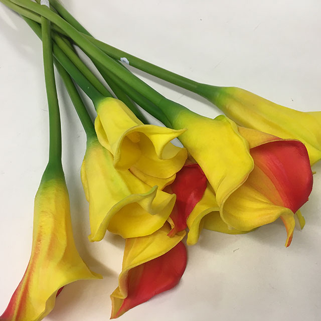 FLO0111 FLOWER, Arum Lily - Red and Yellow $1