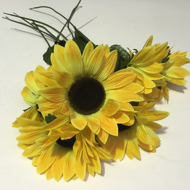 FLO0099 FLOWER, Sunflower $1