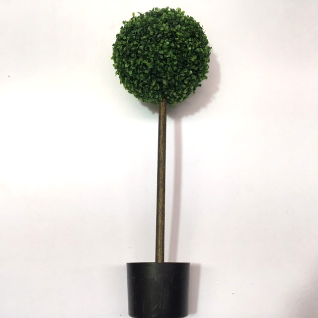 GRE0021 GREENERY, Topiary - Boxwood Single Ball Tree - 80cm H $18.75