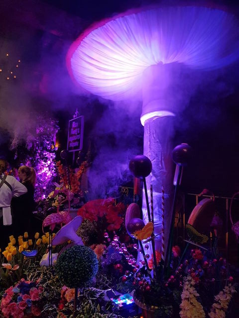 Willy Wonka Event Styling - Toadstool in Fog