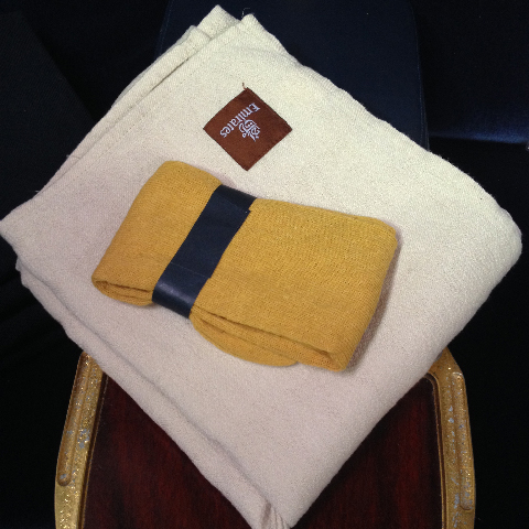 AIR0001 AIRLINE BLANKET, Cream $10