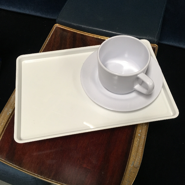 TRA0002 TRAY, White plastic, small $3
