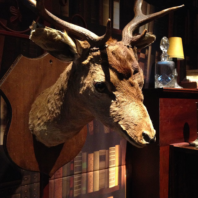 Event Styling - Deer in Library