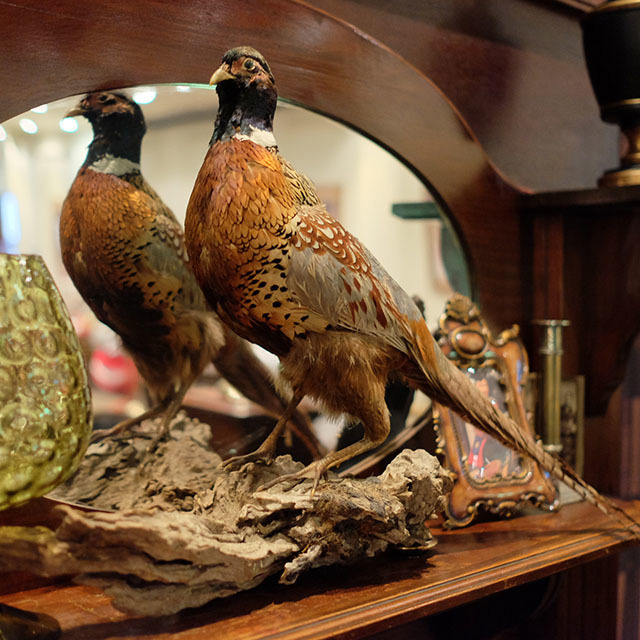 Event Styling - Pheasant on Mantle