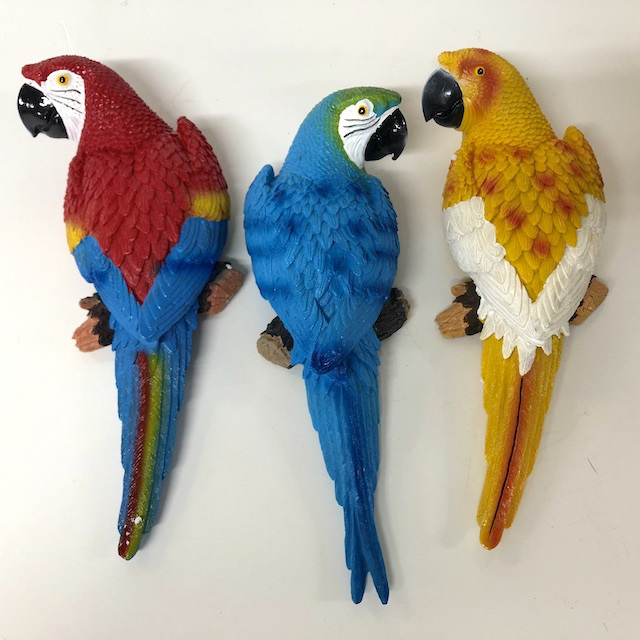 BIR0011 BIRD, Parrot Assorted Colours - Resin 30cm $10