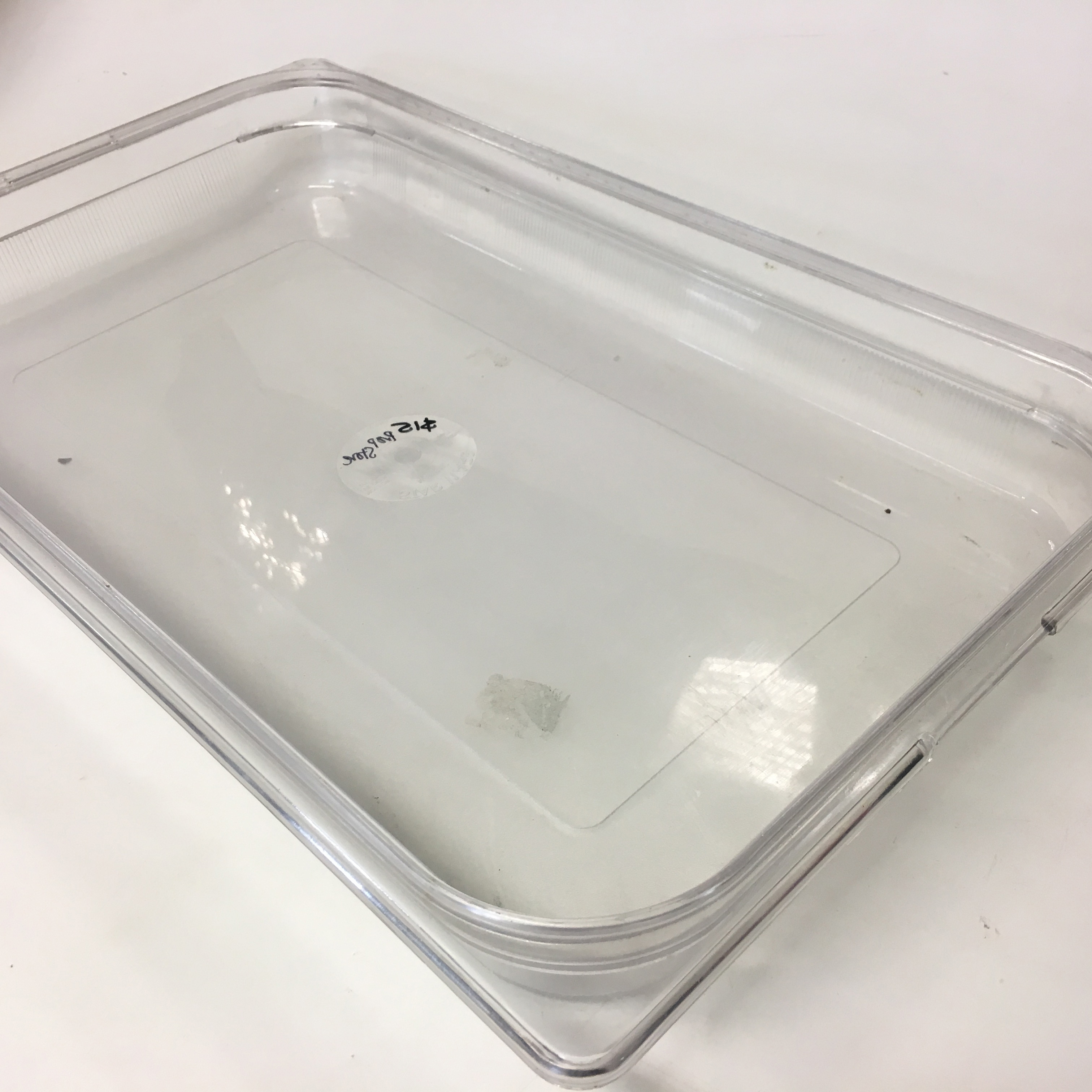 FOO0102 FOOD CONTAINER OR TRAY, Clear Catering Style $5
