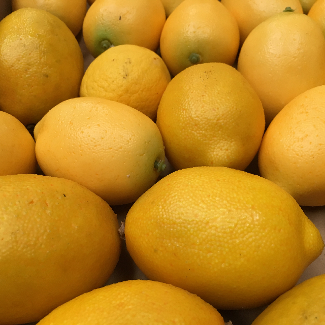 FRU0005 FRUIT, Artificial - Lemon $0.75