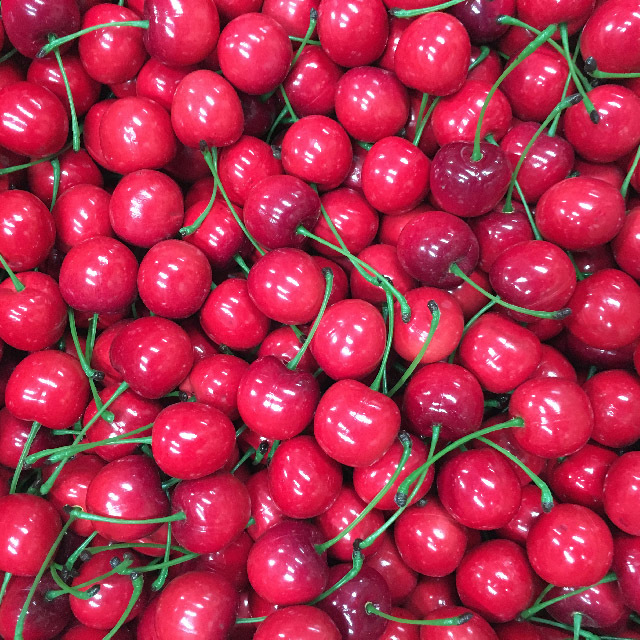 FRU0019 FRUIT, Artificial - Cherries (Price Per Punnet) $2