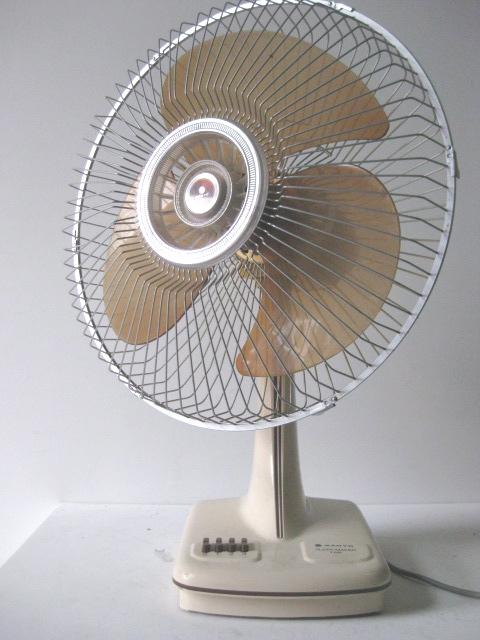 Gumtree Desk Fan : Fans