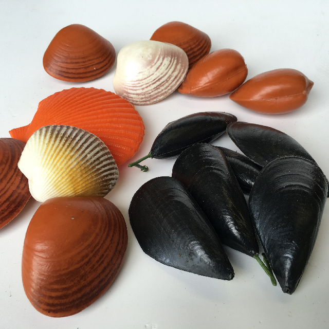 SEAFOOD Shellfish Assorted