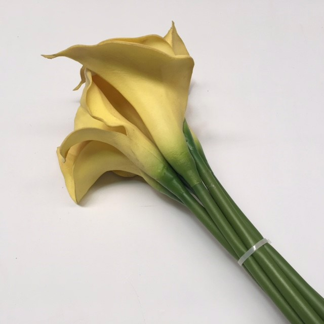 FLO0066 FLOWER, Arum Lily - Yellow $1
