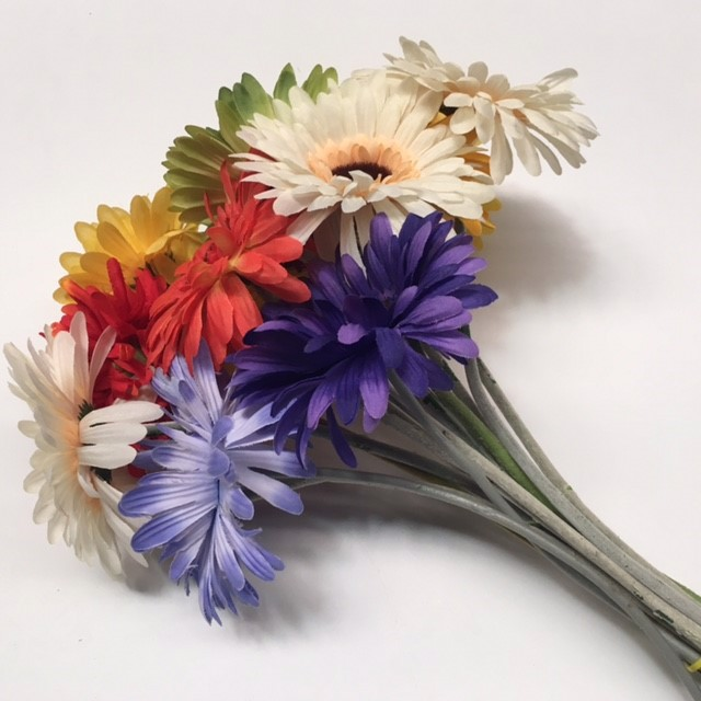 FLO0076 FLOWER, Gerbera - Coloured $0.75