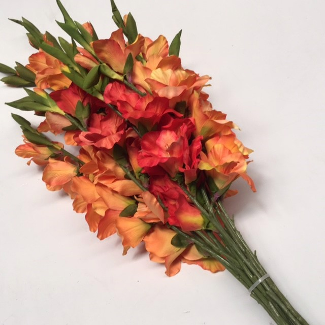 FLO0077 FLOWER, Gladioli - Assorted $2
