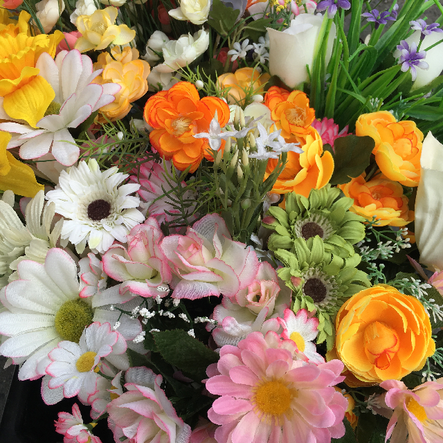FLO0097 FLOWER, Spring Selection - Box Lot $50