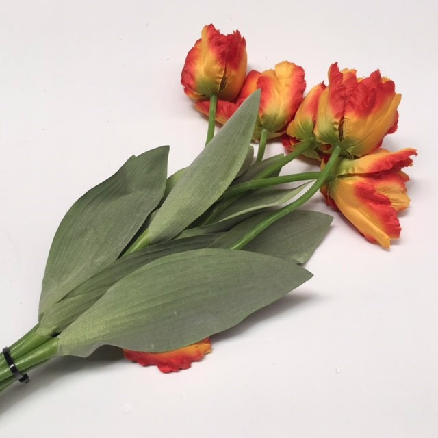 FLO0101 FLOWER, Tulip - Yellow Red $1