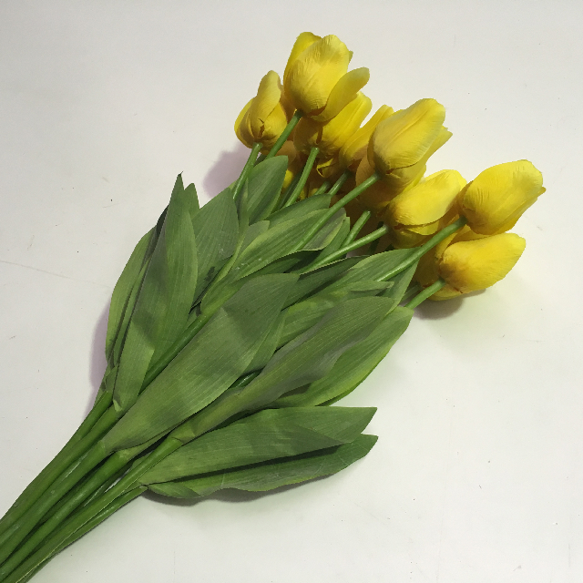 FLO0102 FLOWER, Tulip - Yellow $1