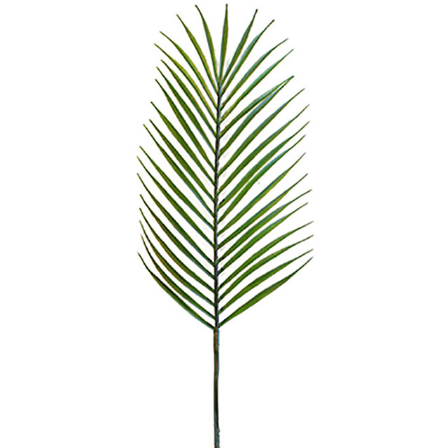 FOL0009 FOLIAGE, Palm Leaf - 74cm $2