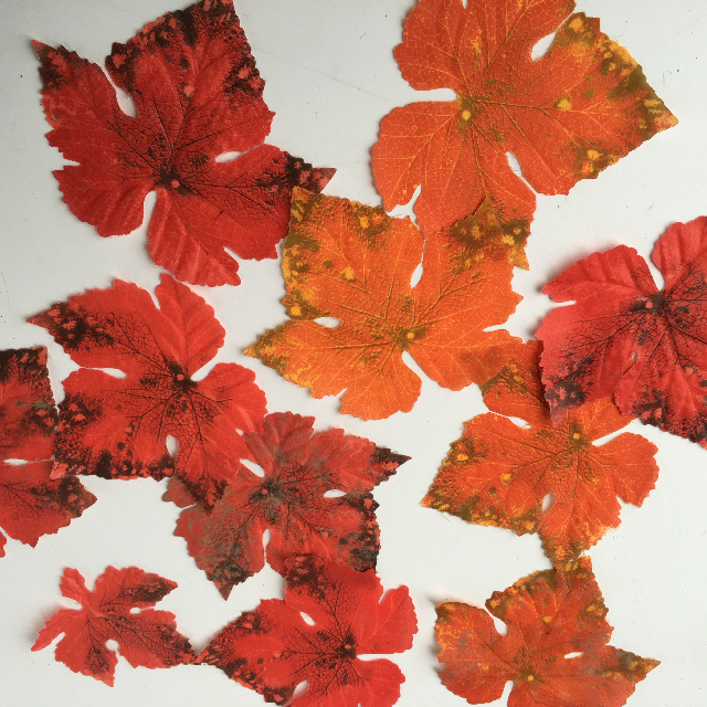 FOL0001 FOLIAGE, Autumn Leaves $0.25 (each)