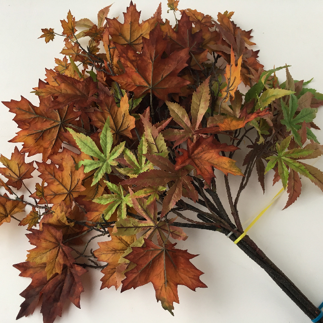FOL0002 FOLIAGE, Autumn Spray - Acer $4.50