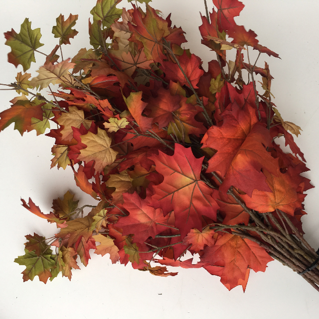 FOL0003 FOLIAGE, Autumn Spray - Liquid Amber $4.50