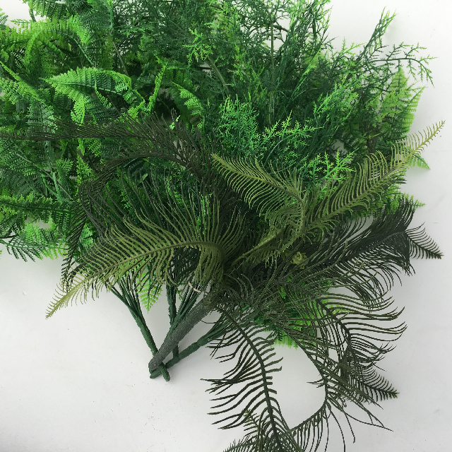 GRE0029 GREENERY, Ferns Assorted $2