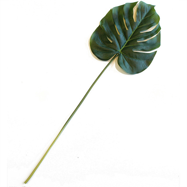 FOL0010 FOLIAGE, Split Philo Leaf - 73cm $3
