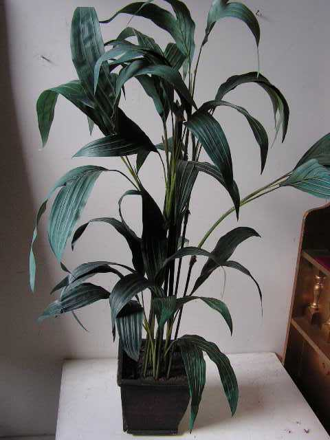 GRE0037 GREENERY, Potted Plant 1.1m $22.50