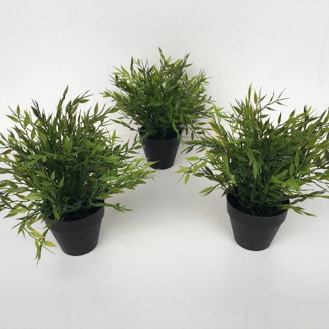 GRE0039 GREENERY, Potted Plant Ex Small $3.75