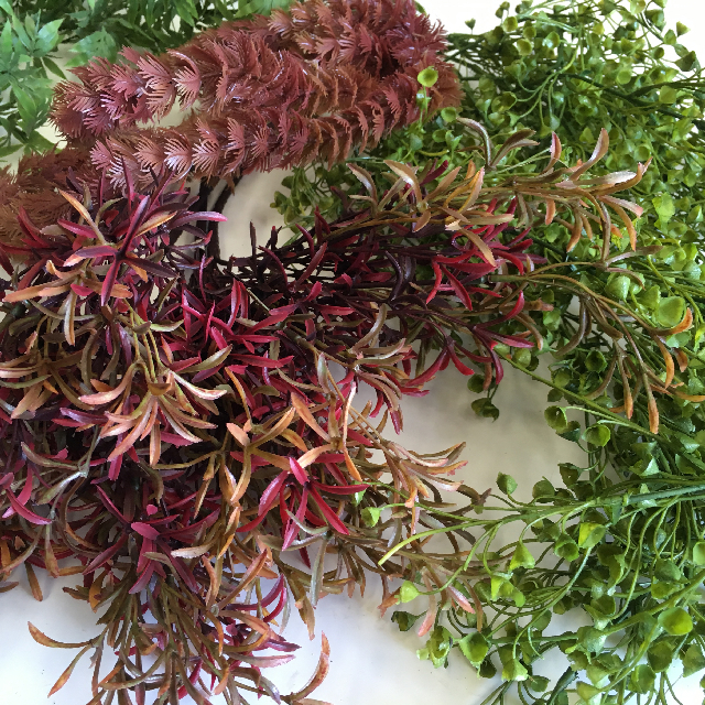Assorted Selection of Seaweed