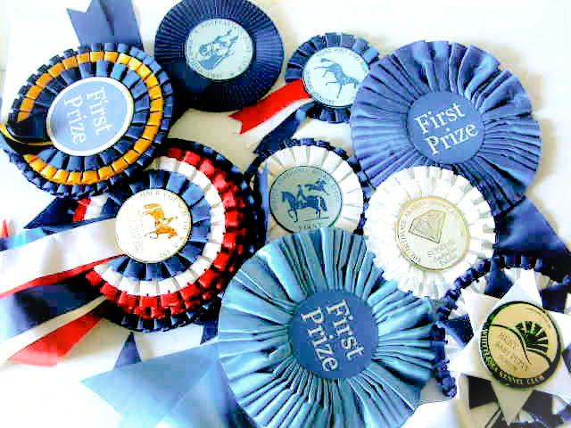 Assorted Rosettes - Winning Selection
