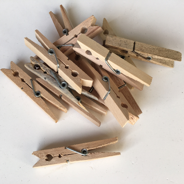 PEG0009 PEGS, Wooden $1.25