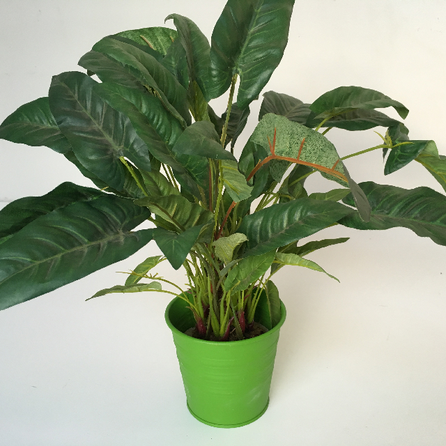 GRE0006 GREENERY, Desk Plant - Potted Medium in Green Pot $3.75