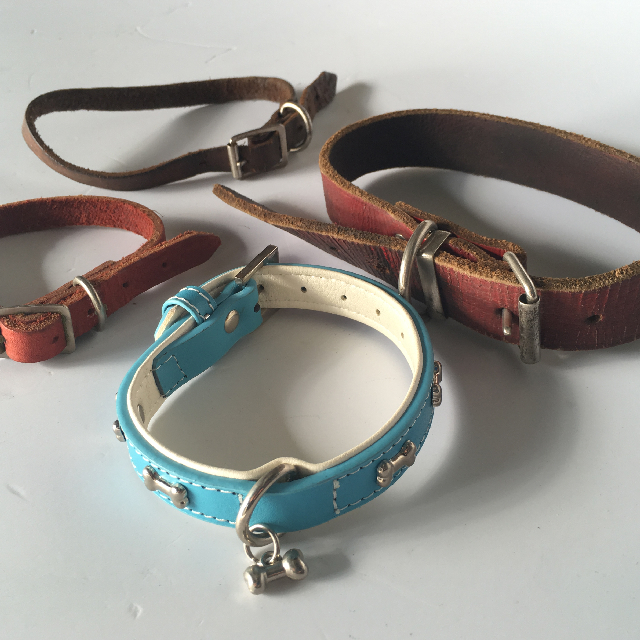 PET0009 PET, Dog Collar - Assorted $3.75