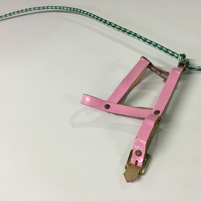 PET0010 PET, Dog Lead - Pink Collar $6.25