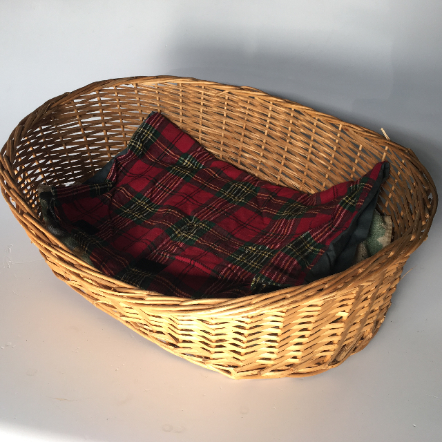PET0012 PET, Basket - Medium Wicker $6.25