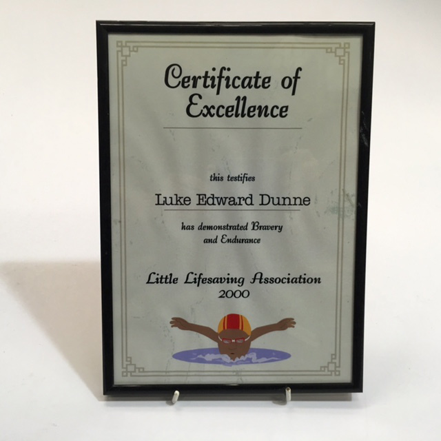 CER0027 CERTIFICATE, Of Excellence Lifesaving $7.50